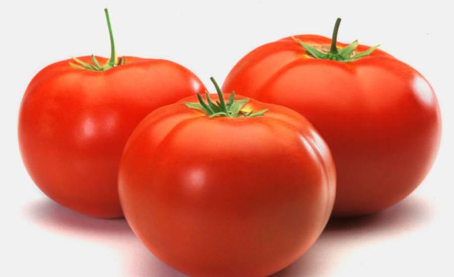 TounsiaNet : Comment éliminer les Points noirs avec une tomate