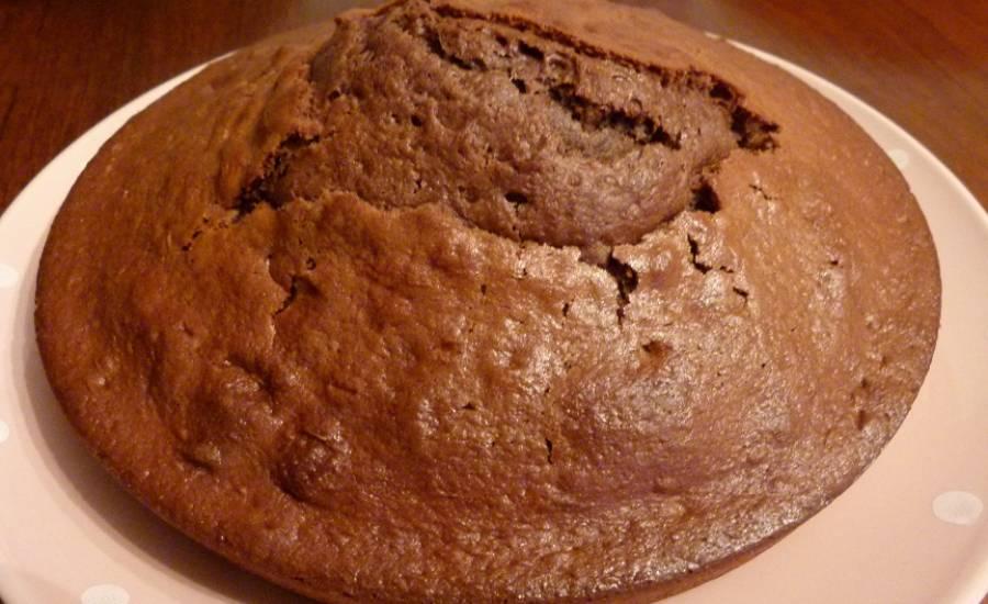 TounsiaNet : Gâteau à la Danette