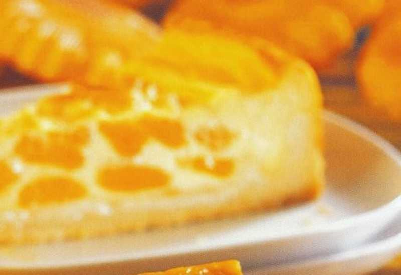 tounsia.Net : Tarte crémeuse aux mandarines