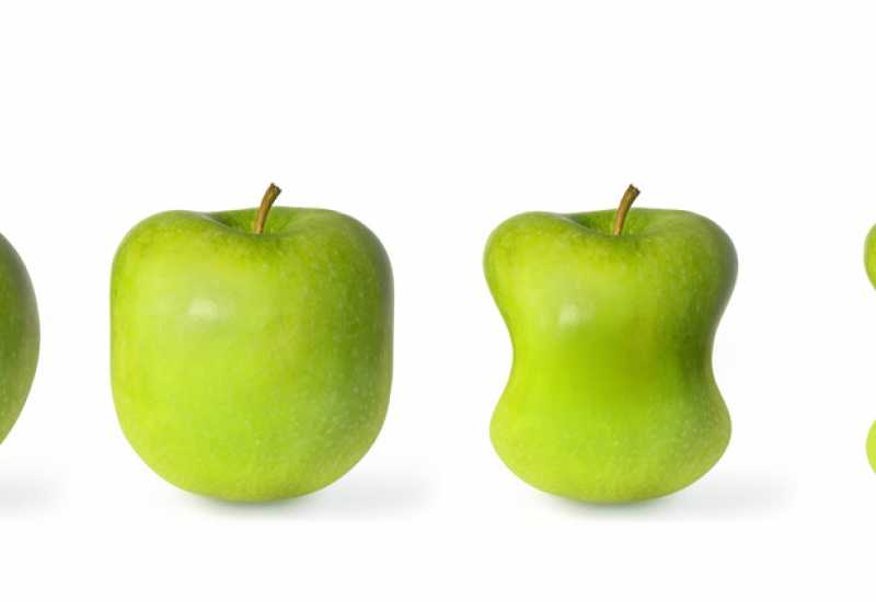 tounsia.Net : Les aliments de maigrir