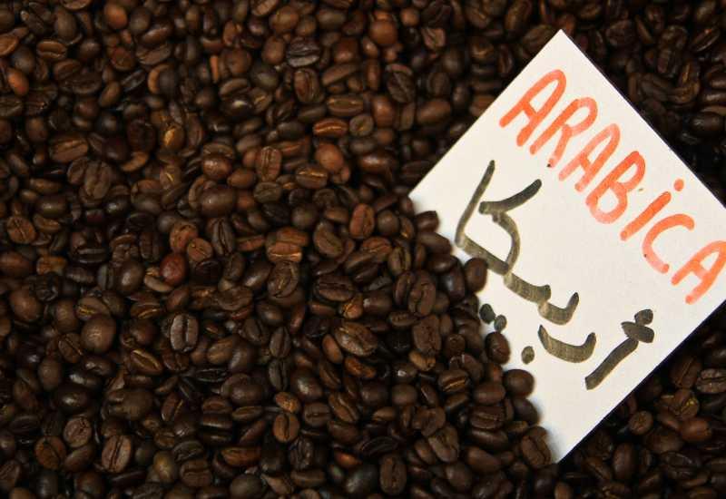 tounsia.Net : Le café et son importance dans les régimes :